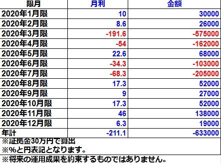 オプションライトコース2020年実績(30万円)