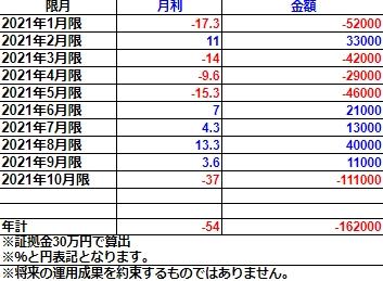 オプションライトコース2021年実績(30万円)
